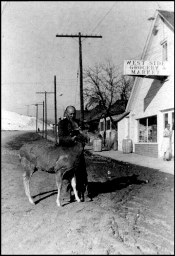 West Side Grocery -- Must Not Be Hunting Season -- Downtown Pagosa Springs photos