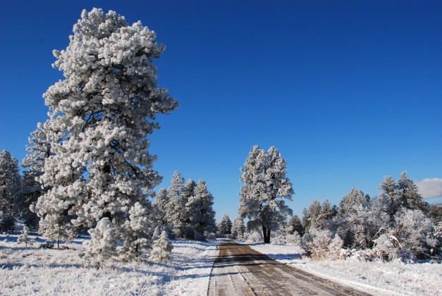 Driving Pagosa Springs Winter Videos